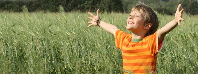 ילדים בעלי רגישות גבוהה – H.S.C